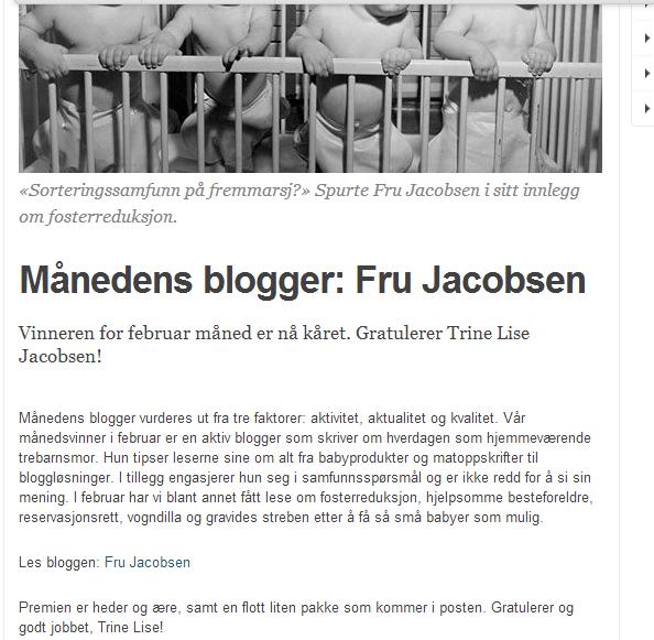 rp_Månedensblogger.png